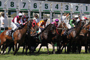 2021 TJ Smith Stakes Winner: Nature Strips Defends His Crown, Claims Sixth Group 1